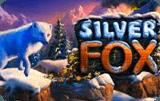 Silver Fox онлайн